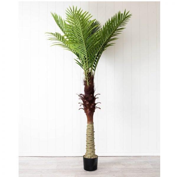 Green Palm Single Artificial Plant - 150CM