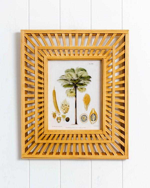 Katie's Botanicals Frame - 34x40cm