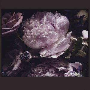 Purple Midnight Bloom Floating Frame