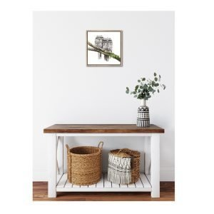Tawny Frogmouths - Canvas Print With Frame