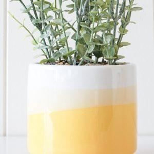 Sunshine Sundays Yellow   Planter with Plant   Set Of 2