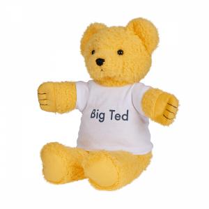 Big Ted Plush   Play School