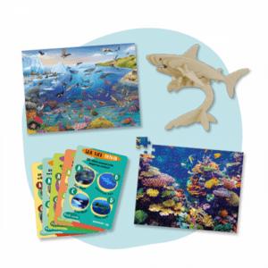 Amazing Sea Life Activity Set